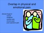 overlap in physical and emotional pain2
