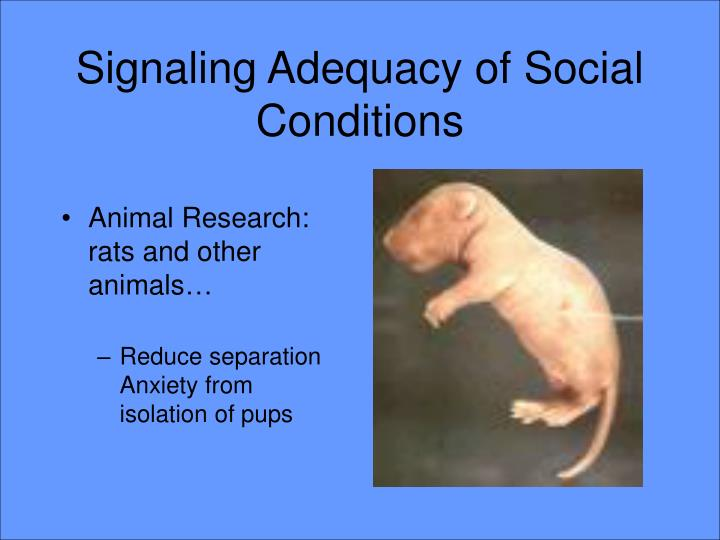 Signaling Adequacy of Social Conditions