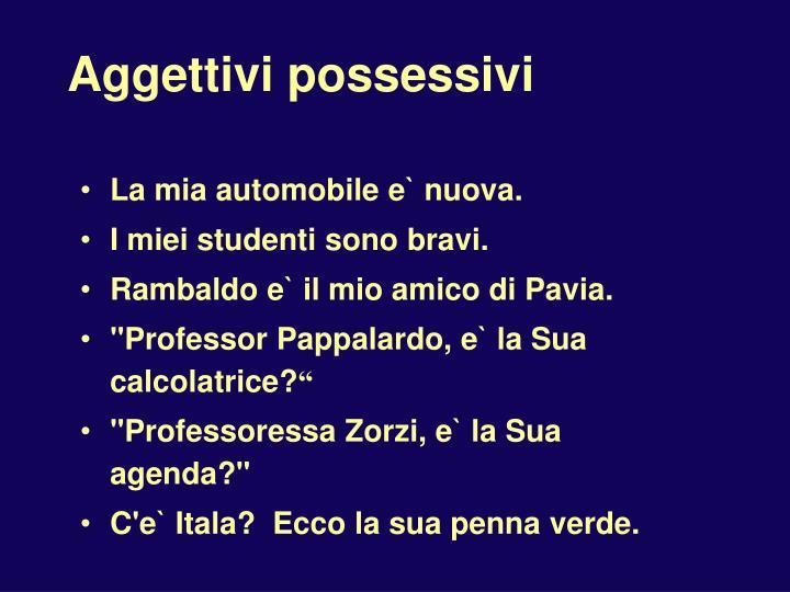 Aggettivi possessivi