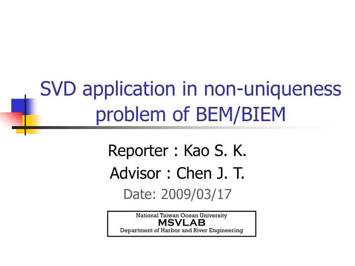 SVD application in non-uniqueness problem of BEM/BIEM