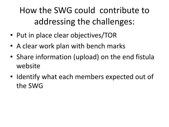 How the SWG could  contribute to addressing the challenges: