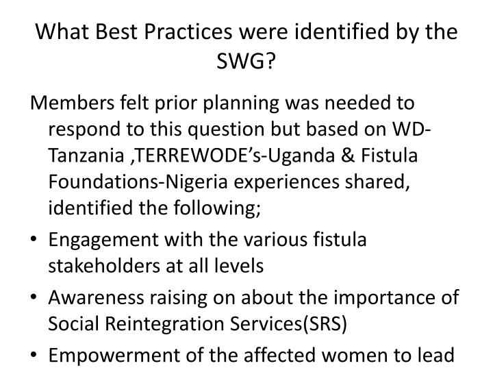 What Best Practices were identified by the SWG?
