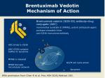 brentuximab vedotin mechanism of action