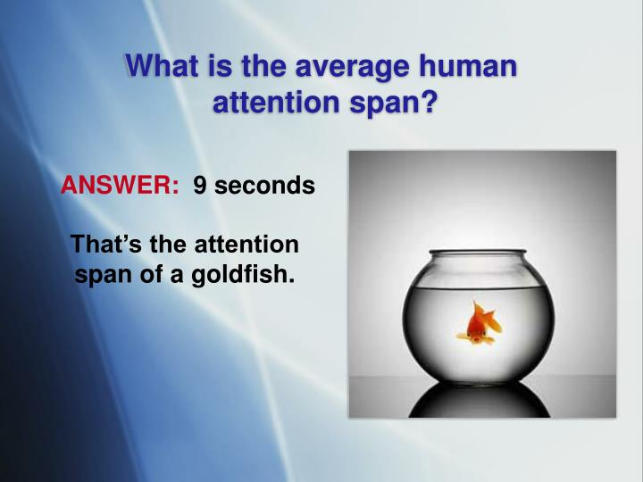 What is the average human