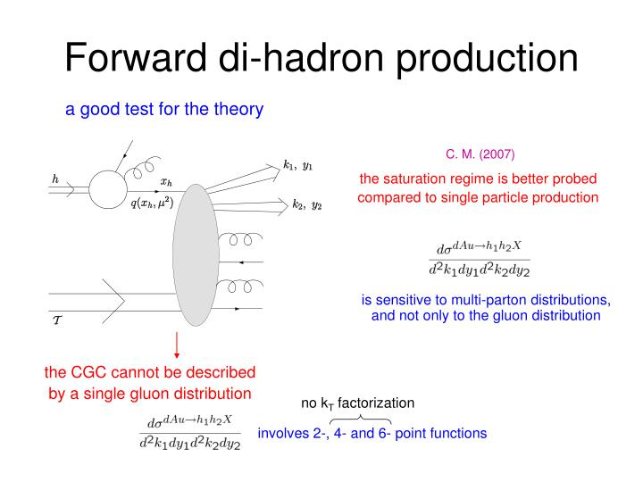Forward di-hadron production