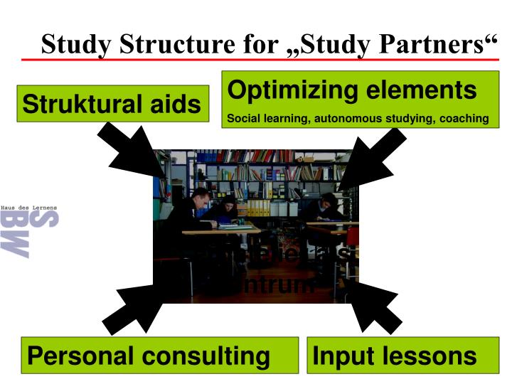 "Study Structure for ""Study Partners"""