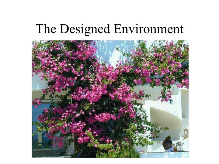 The Designed Environment