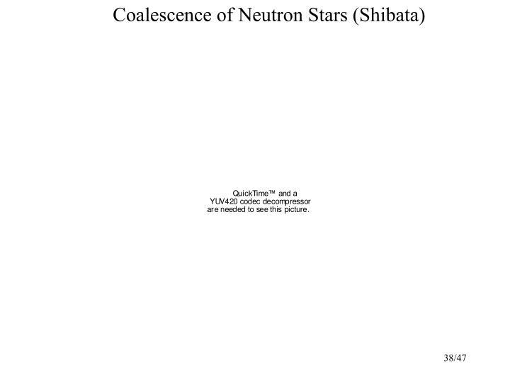 Coalescence of Neutron Stars (Shibata)