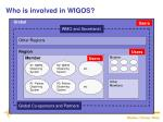 who is involved in wigos1