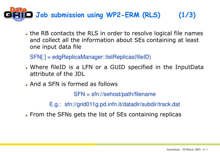 Job submission using wp2 erm rls 1 3