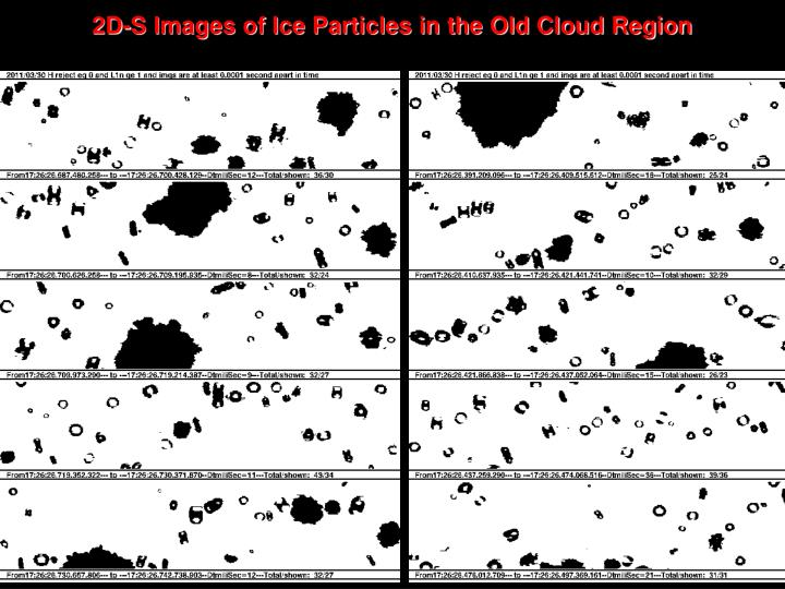 2D-S Images of Ice Particles in the Old Cloud Region