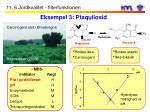 eksempel 3 ptaquilosid