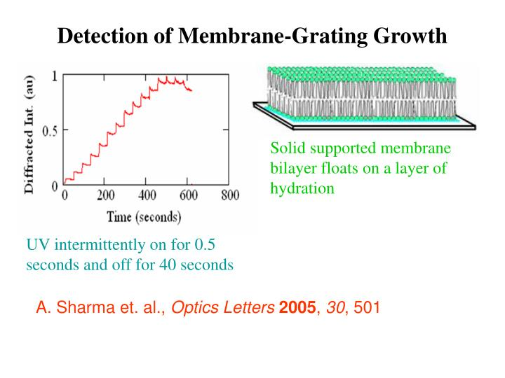 Detection of Membrane-Grating Growth