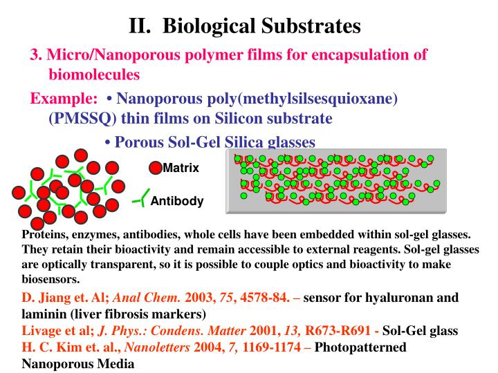 II.  Biological Substrates