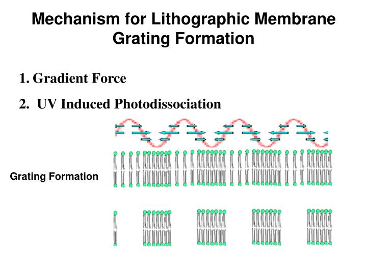 Mechanism for Lithographic Membrane Grating Formation