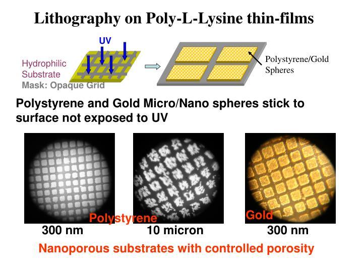 Polystyrene/Gold Spheres