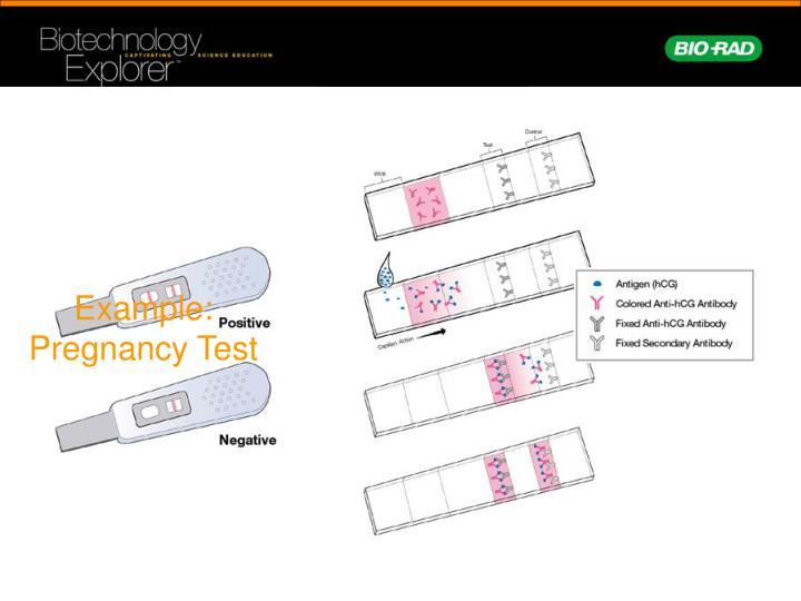 Example: Pregnancy Test