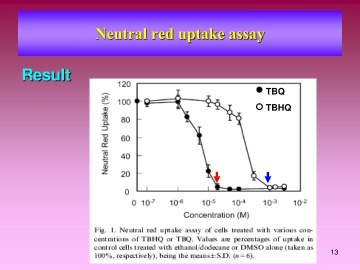 Neutral red uptake assay