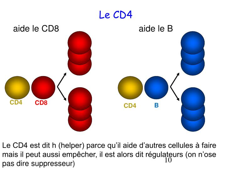 Le CD4
