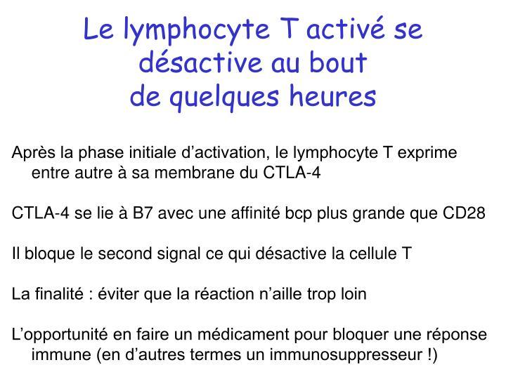Le lymphocyte T activé se désactive au bout