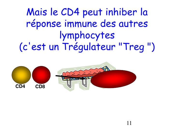 Mais le CD4 peut inhiber la réponse immune des autres lymphocytes