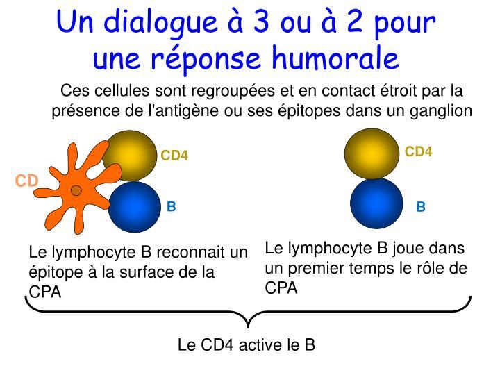 Un dialogue à 3 ou à 2 pour une réponse humorale