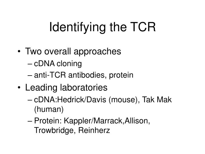 Identifying the TCR