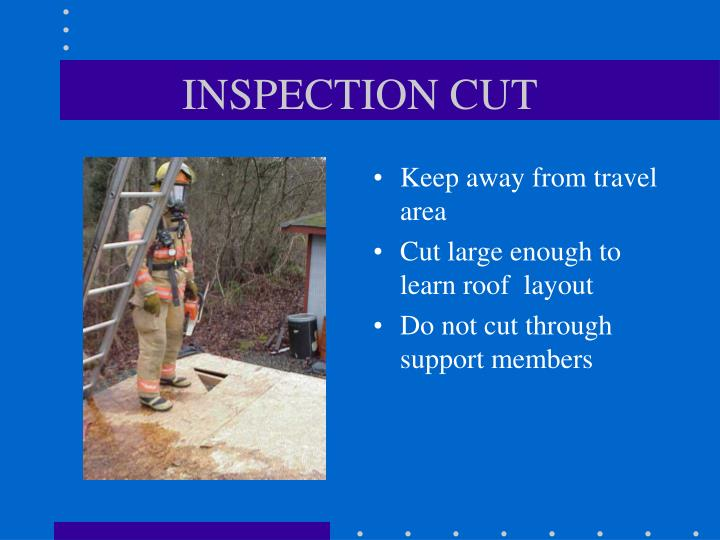 INSPECTION CUT