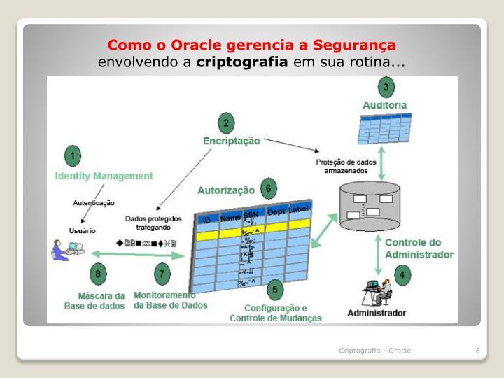 Como o Oracle gerencia a Segurança