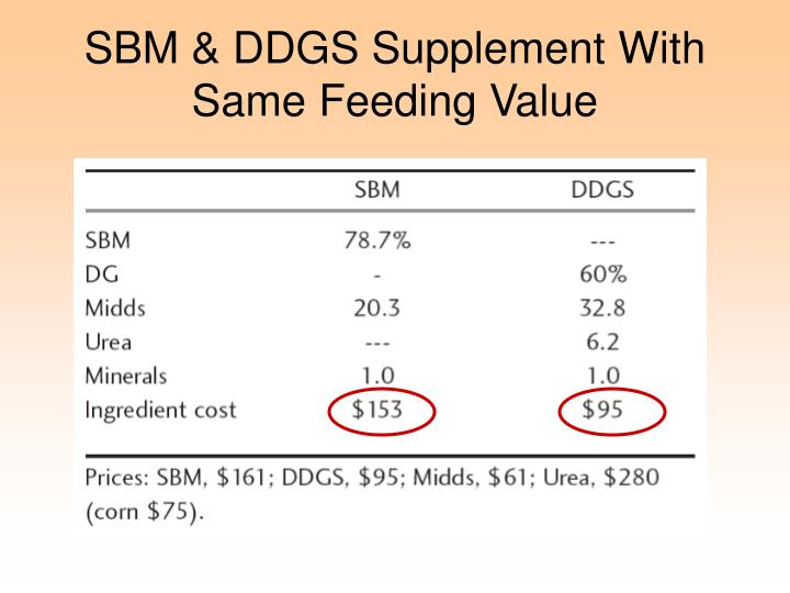 SBM & DDGS Supplement With Same Feeding Value
