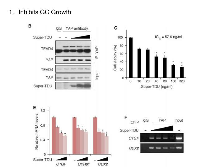 1、Inhibits GC Growth