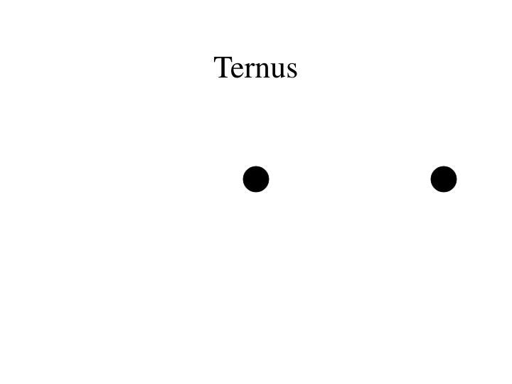 Ternus