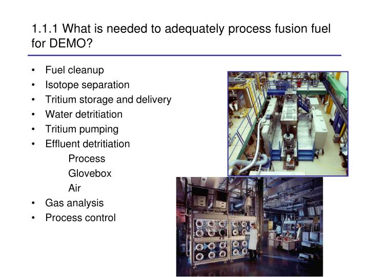 1.1.1 What is needed to adequately process fusion fuel for DEMO?