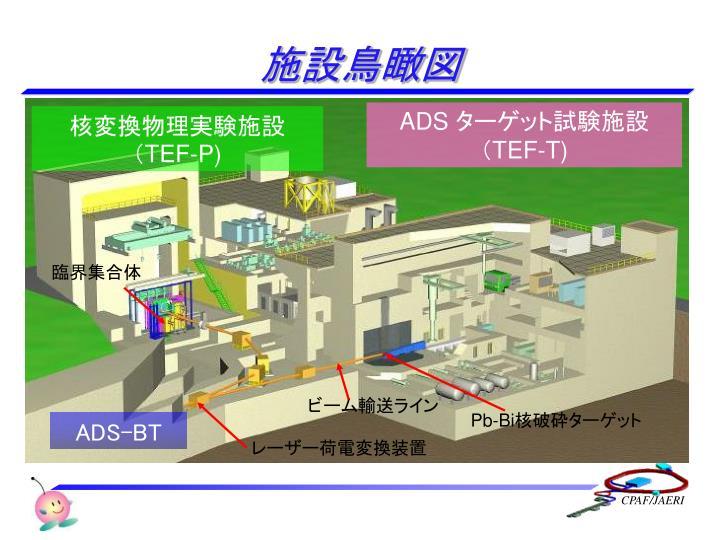 施設鳥瞰図