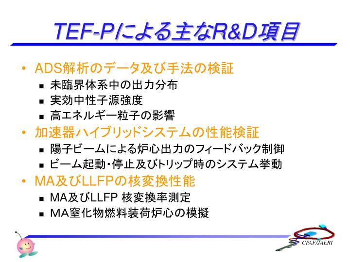 TEF-P