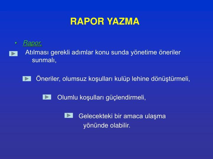 RAPOR YAZMA