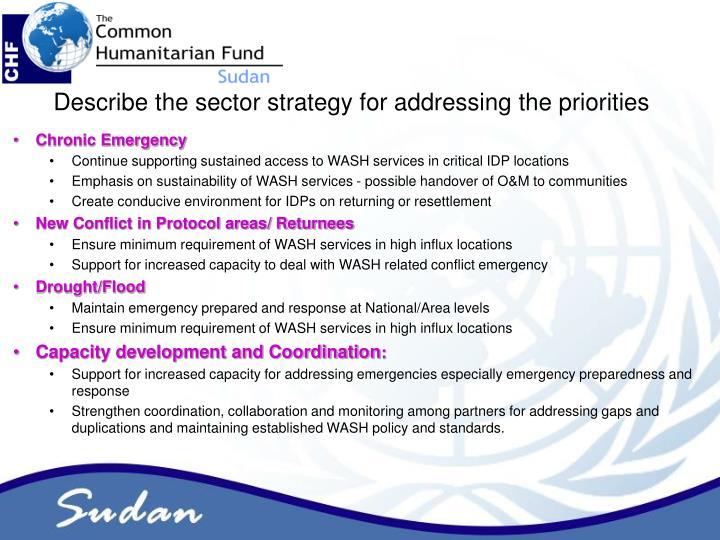 Describe the sector strategy for addressing the priorities