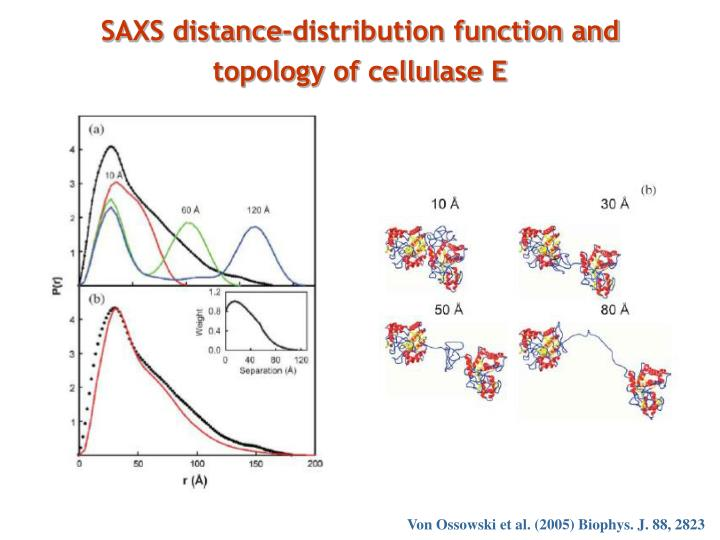 SAXS distance-distribution function and