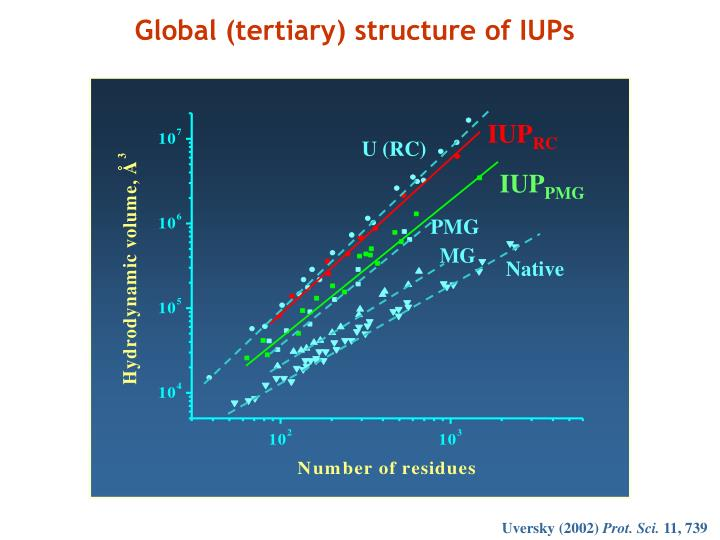 Global (tertiary) structure of IUPs