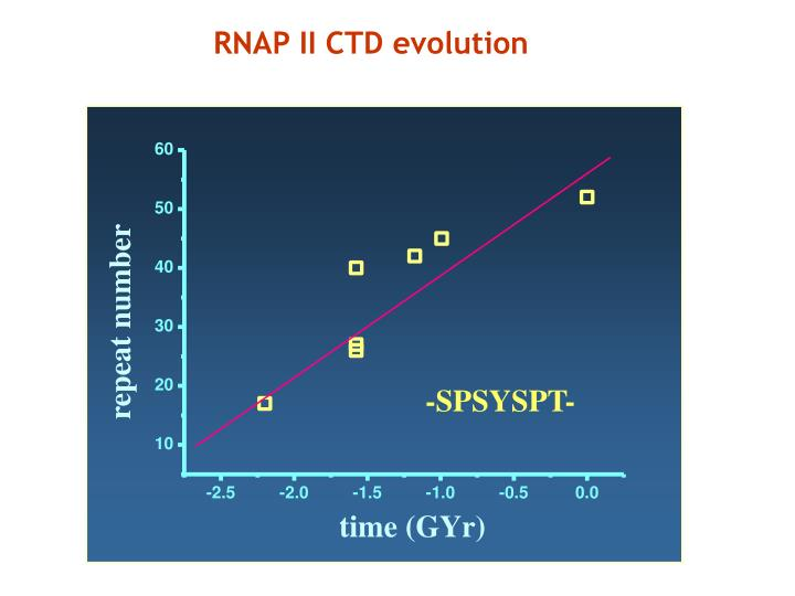 RNAP II CTD evolution