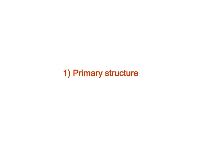 1) Primary structure