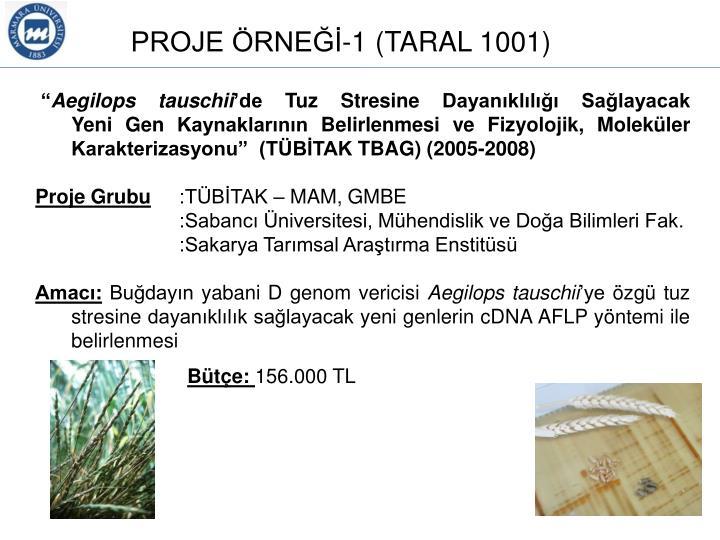 TARAL 1001 (2005-2008)