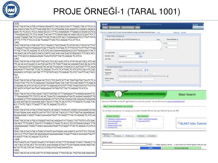PROJE ÖRNEĞİ-1 (TARAL 1001)