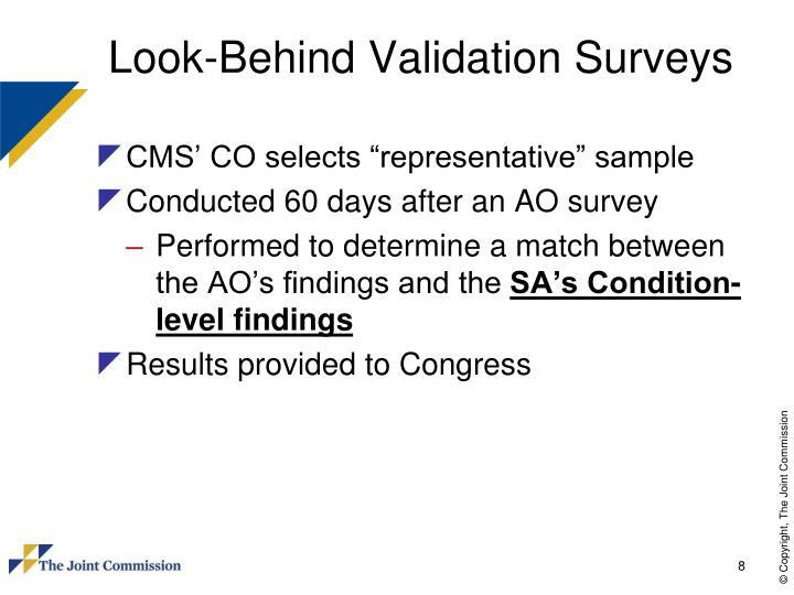 Look-Behind Validation Surveys