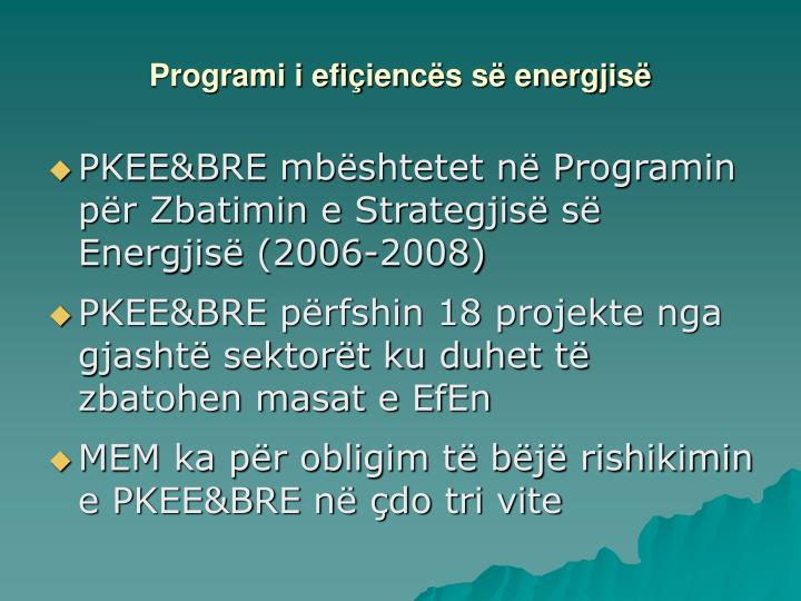 Programi i efi