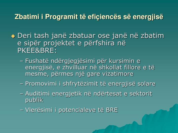 Zbatimi i Programit të efi