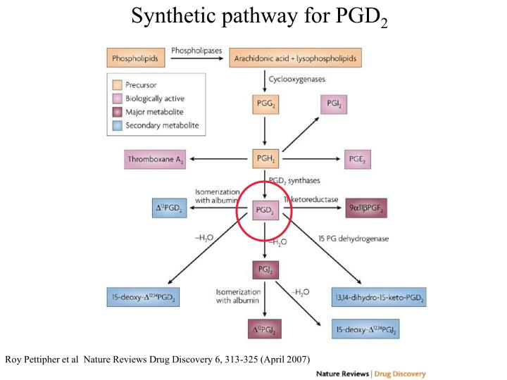Synthetic pathway for PGD