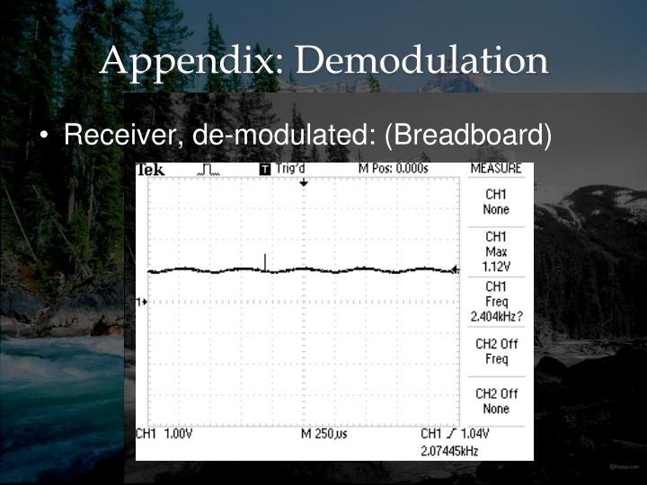 Appendix: Demodulation