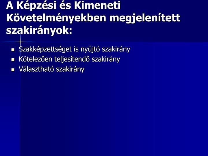 A Képzési és Kimeneti Követelményekben megjelenített szakirányok: