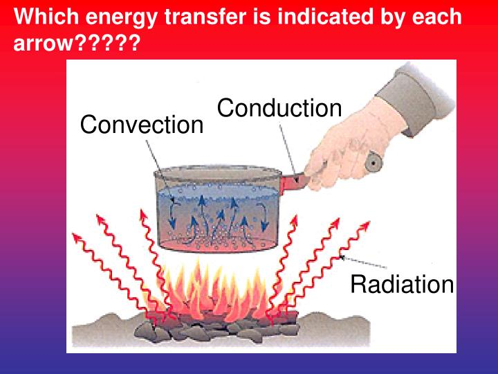 Which energy transfer is indicated by each arrow?????